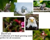 Bird-Pack-Final