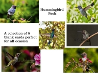 HummingBirdPackFinal