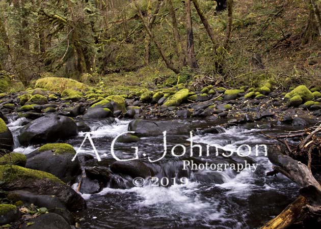 Colombia river Gorge, Herman Creek, Pacific Crest Trail Cascade Locks Or.